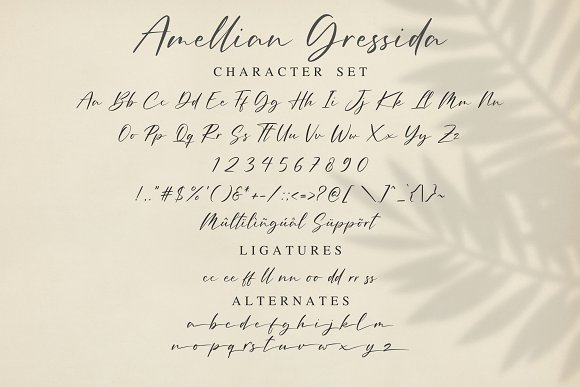 Amellian Gressida in Display Fonts - product preview 12