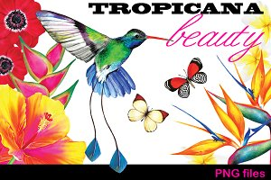 Tropicana Beauty pack