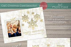 Christmas Photo Card Collection15-12