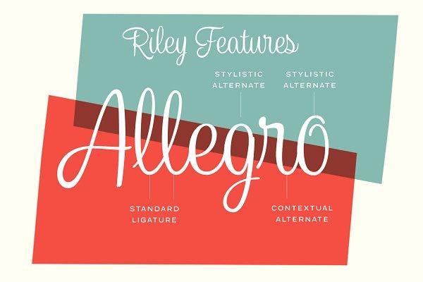 Best Riley -Vintage Script Vector