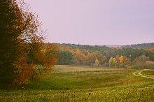 Autumn Ground Road at Evening