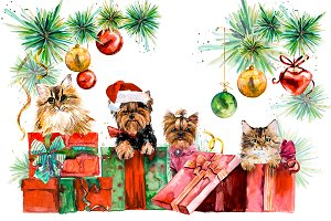 Yorkshire terrier. Christmas Tea
