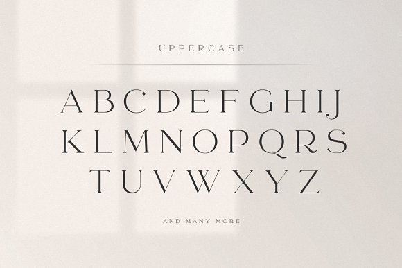 abigail - unique ligature font in Display Fonts - product preview 14