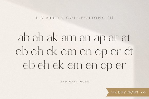 abigail - unique ligature font in Display Fonts - product preview 17