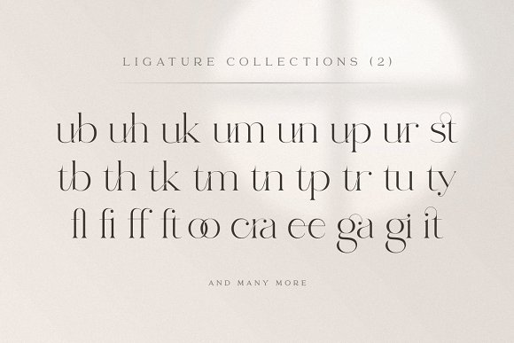 abigail - unique ligature font in Display Fonts - product preview 18