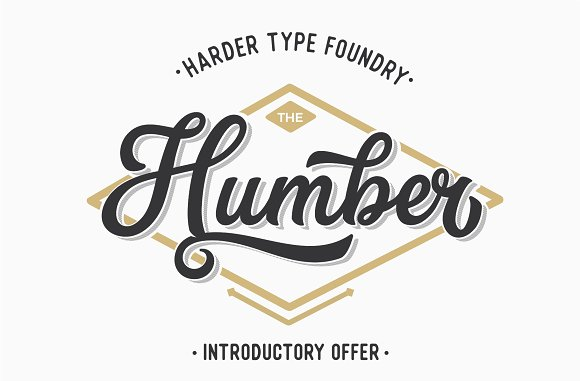 HRDR FONT BUNDLE! in Display Fonts - product preview 18