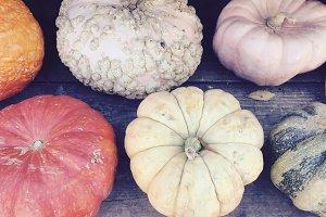 Fairytale Autumn Pumpkins