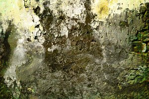 grunge concrete lichen wall backgrou