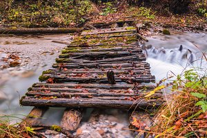 Old wooden bridge in an autumn