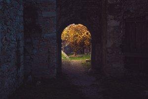 Dark gateway
