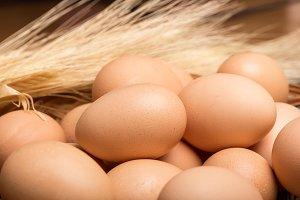 fresh egg