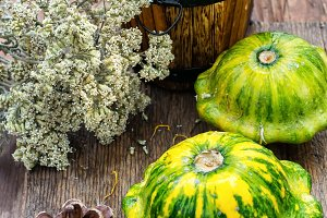 still life with autumn squash