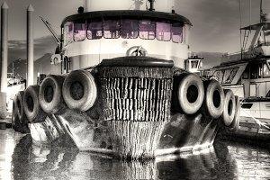 Marine Workhorse