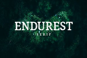 Endurest Font 50% Discount!