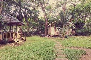 vintage garden home in retro filter