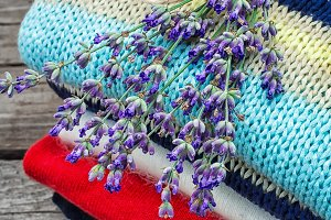 branches of blooming lavender and wo