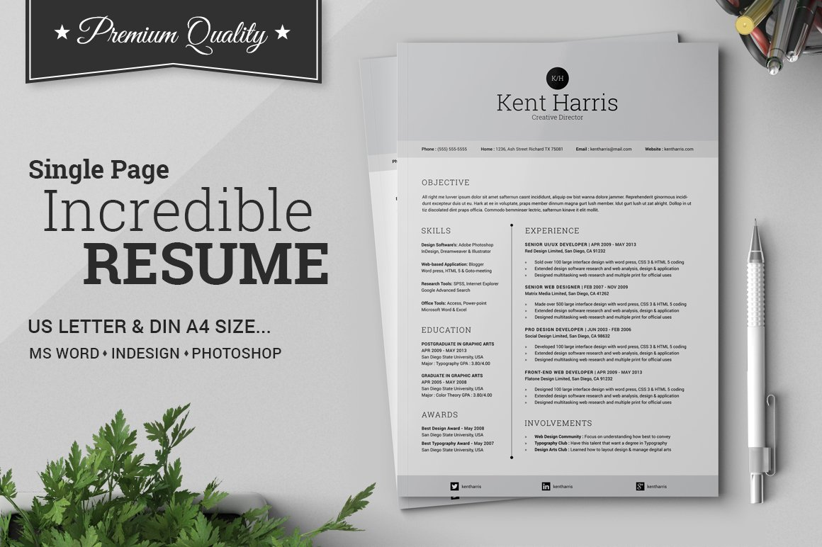 Incredible Single Page Resume ~ Resume Templates ~ Creative Market