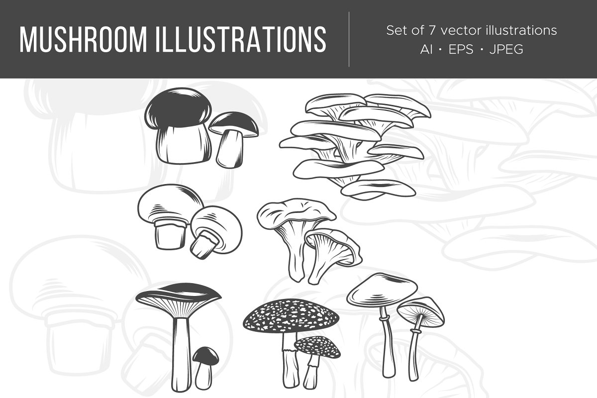 Mushrooms in Illustrations - product preview 8