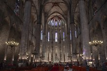 The Catedral