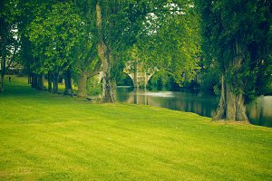 park with river