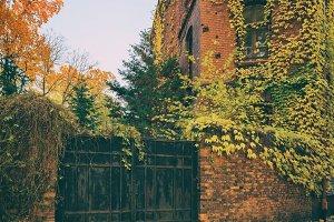 Abstract autumn city landscape
