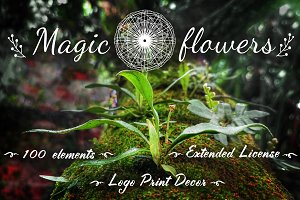 ✿Magic Flowers✿