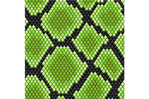 Seamless pattern of reptile skin