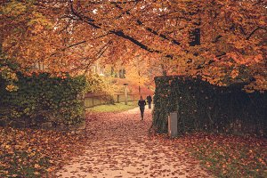 Female walking in the autumn park