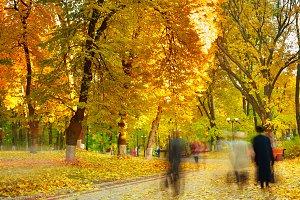 Autumn park view, long exposure