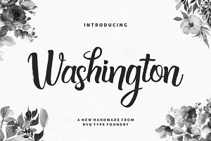Washington + bonus (introsale)