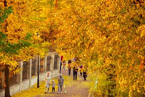 People walking in an autumn park