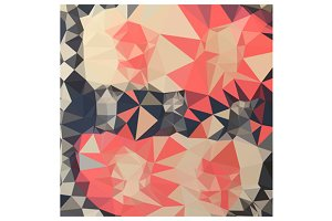 Coral Red Abstract Low Polygon Backg