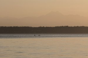 Kayaks on the Puget Sound