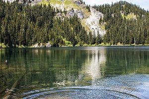 Tossing Rocks into Mirror Lake