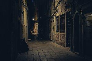 Venice narrow street