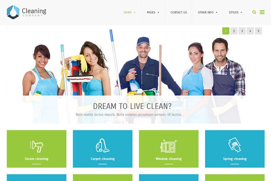 Cleaning Company - WordPress Theme