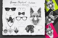 German Shepherd / Fashion