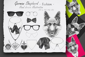 German Shepherd / Fashion