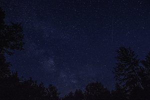Shooting Star over Treeline