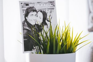 Potted with photos