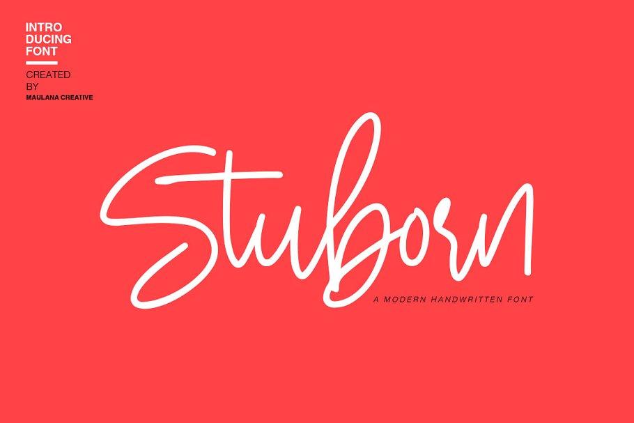 Stuborn - Modern Handwritten Font