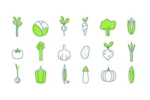 Vegetables line style, modern design