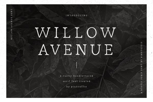 Willow Avenue | Hand-lettered Serif