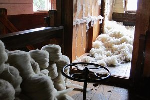 Wool shearing and roving