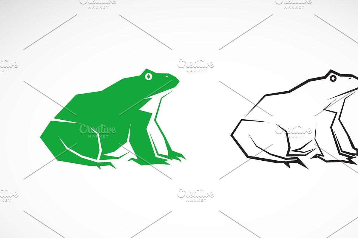 Vector of frog design. Amphibian.