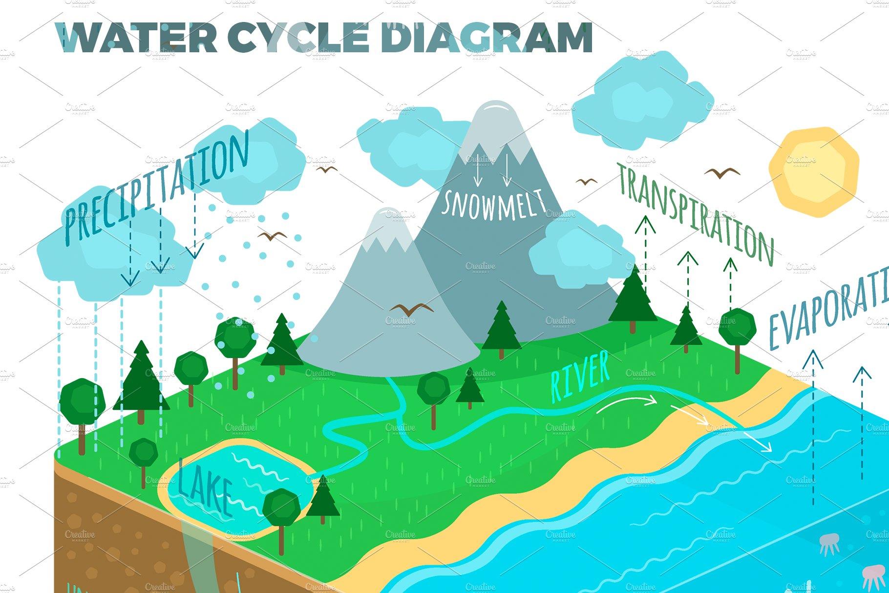 Water Cycle Diagram   Custom-Designed Illustrations ...