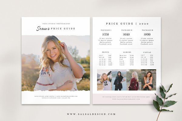 Price Guide Template PG036