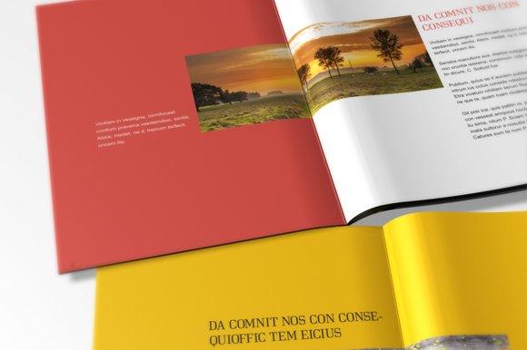 Multipurpose Brochure Template Brochure Templates Creative Market