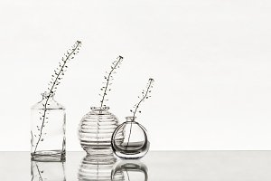 Glass vases with branches