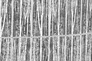 monochrome lines - dolder